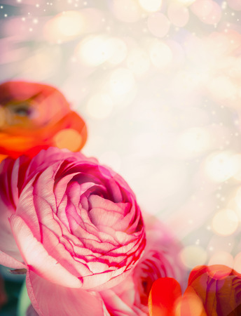 Floral border with close up of  red pink flowers and bokeh background. Festive greeting card Stock Photo