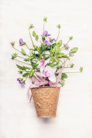 Peat pot with pretty flowers on white wooden background, top view