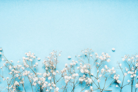 Little white Gypsophila flowers on blue background, pretty floral border, top view, copy space, horizontal