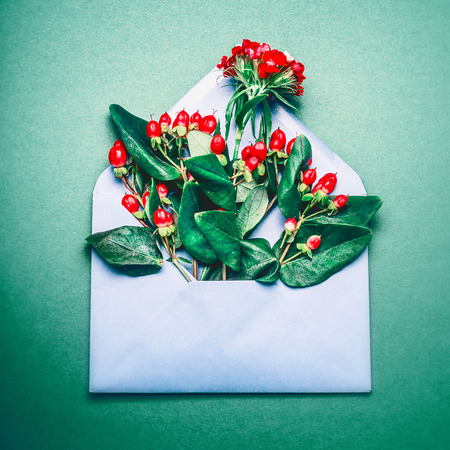 Blue opened envelope with red autumn Rowan berries and branches on green background, top view