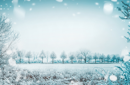 Winter day country landscape with frozen tress and snow, outdoor nature background Stock Photo