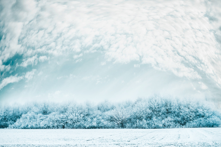 Winter landscape background with Snow covered trees, field and beautiful sky after a blizzard Imagens