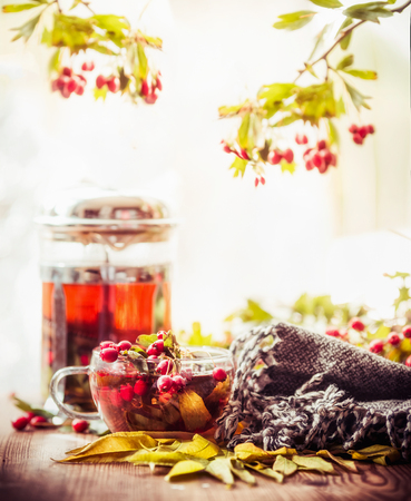 Autumn still life with cup and tea pot with red berries, scarf  and fall leaves at sunny nature background