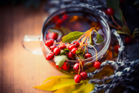 Cup of autumn tea with red berries, fall leaves and scarf , top view, close up