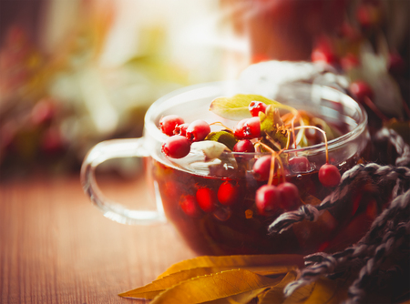 Cup of autumn tea with red berries of hawthorn and fall leaves, front view Stock Photo