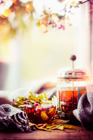 Healthy healing autumn tea with fall berries and herbs on window sill with leaves and scarf at nature background, front view