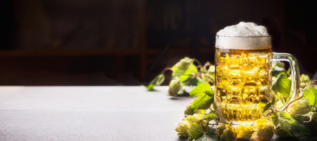 Mug of beer with foam on table with hops at dark background , front view, banner