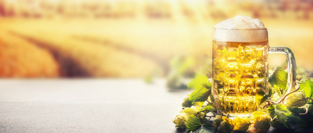 Mug of beer with foam on table with hops at field nature background with sunbeam, front view, banner