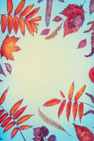 Aislado en el fondo blanco. hermosa composición de temporada de otoño Foto de archivo - 88171418