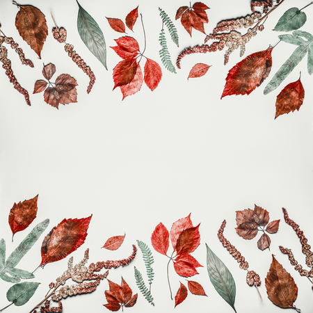 Autumn composing or pattern background made with various colorful  fall leaves on light background, top view, frame Stock Photo