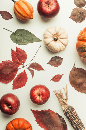Creative Flat lay of  various colorful little pumpkin, apples and fall leaves on white table background, top view. Autumn composing or pattern background , flat lay