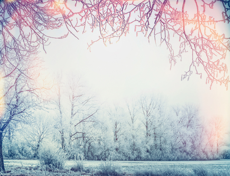Beautiful winter country landscape with snow trees and frame of branches