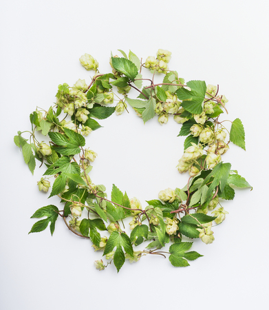 Wreath of fresh organic hops on white background, top view