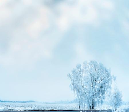 Winter landscape with snow field and frosty tree at sky background Reklamní fotografie