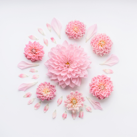 Round pink pale flowers composition with petals on white desktop background, flat lay, top view. Creative floral layout or greeting card for Mothers day, wedding , happy event or birthday