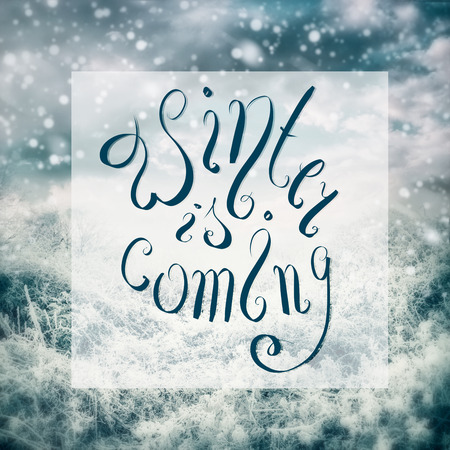 Winter is coming lettering  on landscape with frozen trees and plants at beautiful sky background with snow