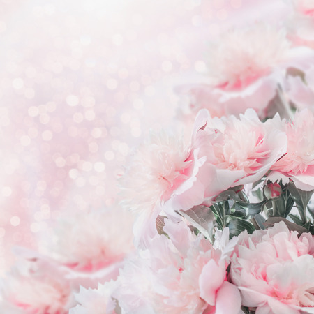 Pastel pink peonies floral border with bokeh. Layout or greeting card for Mothers day, wedding or happy event