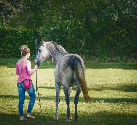 Free horse with a woman. Horsemanship scene. Horse free dressage Stok Fotoğraf