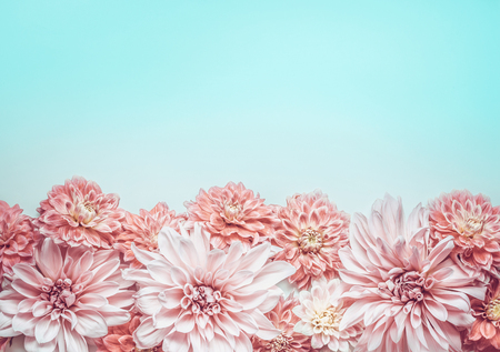Pretty pastel pink flowers border on pale blue background top pretty pastel pink flowers border on pale blue background top view floral layout or mightylinksfo