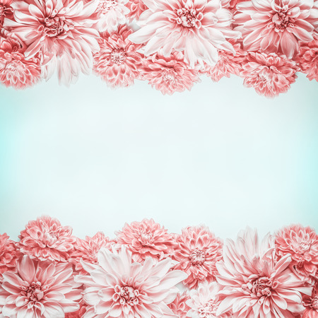 Pastel pink flowers frame on pale blue background, top view. Floral layout or mock up , horizontal
