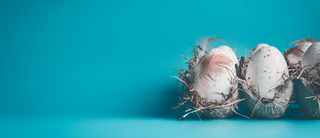 Eggs with feathers in carton box  package on blue background, front view, banner. Easter concept Stockfoto