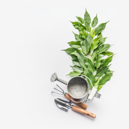 Watering can with gardening tools and green bunch of twigs on white desk background, top view