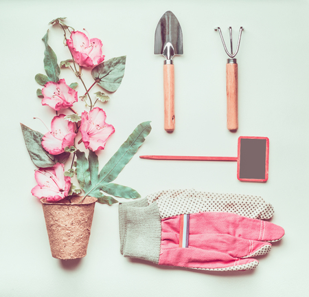 Gardening composing with sign, tools, pink gloves, pink flowers and plant pots, shovel at light green background, top view, flat lay Stock Photo