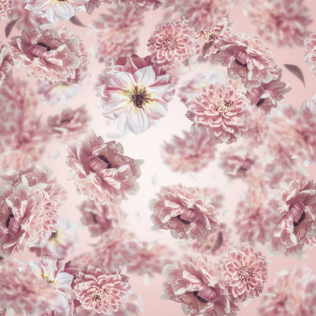 Falling or flying pastel pink flowers background or pattern