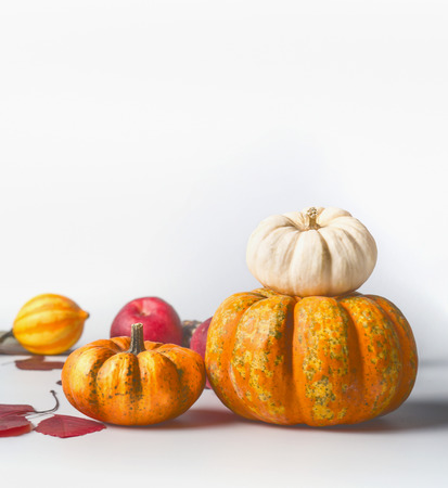Pumpkins with autumn leaves on white background, front view, copy space for text Stock Photo