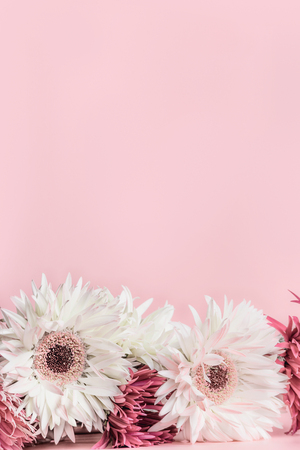 Vertical floral pink background with lovely white flowers