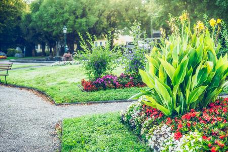 Sommergarten oder Park Landschaftsbau mit schönen Canna und Blumenbeet, Natur im Freien Standard-Bild - 100901208