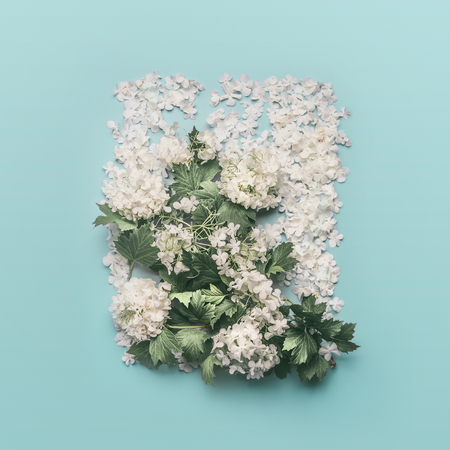 Decorative floral layout made of white flowers, petals and blossom on pastel blue background. Spring and summer concept.  Flat lay, top view. Invitation or card for wedding, birthday and other holiday