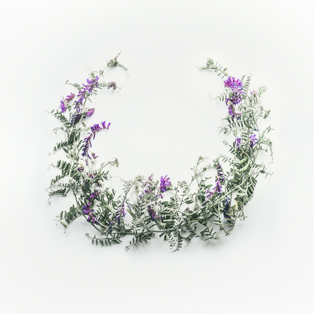 Wreath made of wild purple flowers with leaves on white background. Summer concept. Flat lay, top view. Floral design and flowers arrangement . Mouse pea. Vetch multicolor (Vicia cracca)