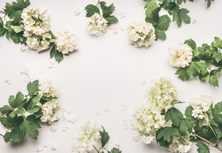 Beautiful frame layout with flowers on white background, top view Stock Photo