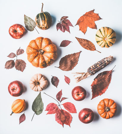 Autumn flat lay with various pumpkins and dried leaves on white background, top view Foto de archivo - 105786645