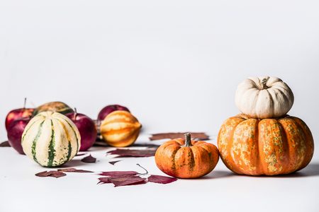 Various pumpkins on white background with fall leaves, front view. Autumn vegetables , Thanksgiving food concept Stock Photo