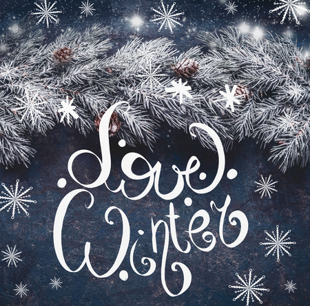 Love winter text lettering on blue  with hoarfrost fir branches and snow