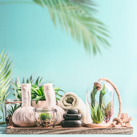 Massage equipment: rolled towels, compress balls, stack of hot stones on wooden table with various succulent plants in glass at light blue with hanging palm leaves Standard-Bild