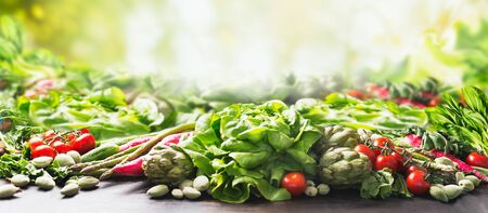 Group of various harvesting organic vegetables at sunny summer  garden green nature background. Veggies growing. Eco food.  Tomato, lettuce, root vegetables,artichokes, asparagus,herbs,carrots. Banner Zdjęcie Seryjne