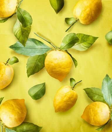 Ripe lemons on branch with green leaves at yellow background. Creative. Summer Pattern. Trendy fruits.