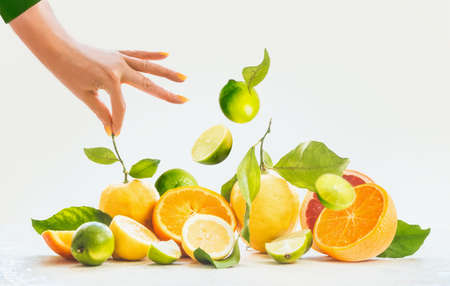 Woman hands holding stalk of lemon. on bunch of citrus fruits: lemon, lime, orange with leafs and stalks at white background. Flying lime. Summer concept with fresh, healthy fruits. Front view