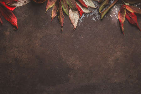 Dark autumn background with red fall leaves border. Top view Stok Fotoğraf - 163962635