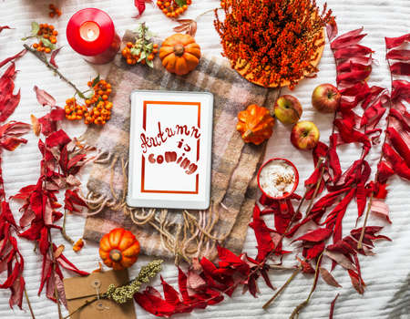 Autumn is coming. Cozy lifestyle frame with pumpkins, red fall leaves, cappuccino, candles and check scarf on white blanket. Top view. Flat lay