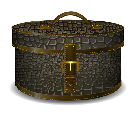 coffer: fashion hat box . crocodile leather  coffer Illustration