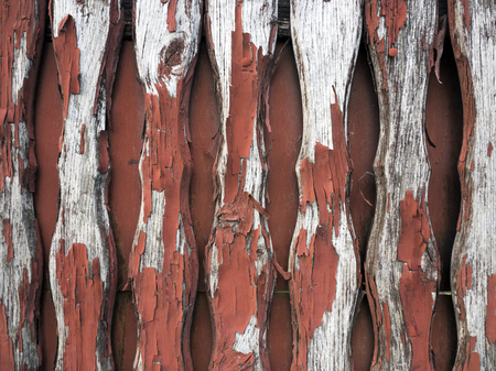 background in the form of an old painted fence