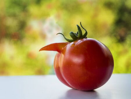 funny deformed tomato with a nose