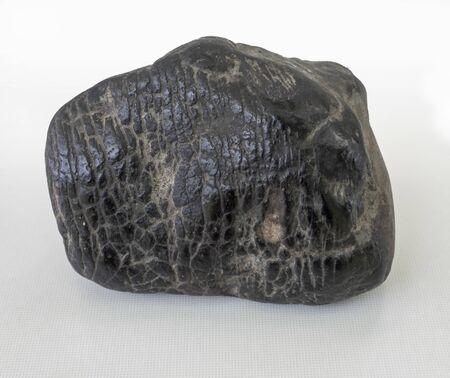 black chondrite meteorite on a white background