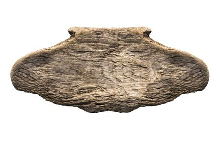 old rotten wooden plate in the form of a plate on a white background