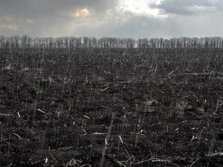 snow falls on a black plowed field Reklamní fotografie