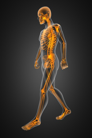 attend: walking man radiography made in 3D Stock Photo